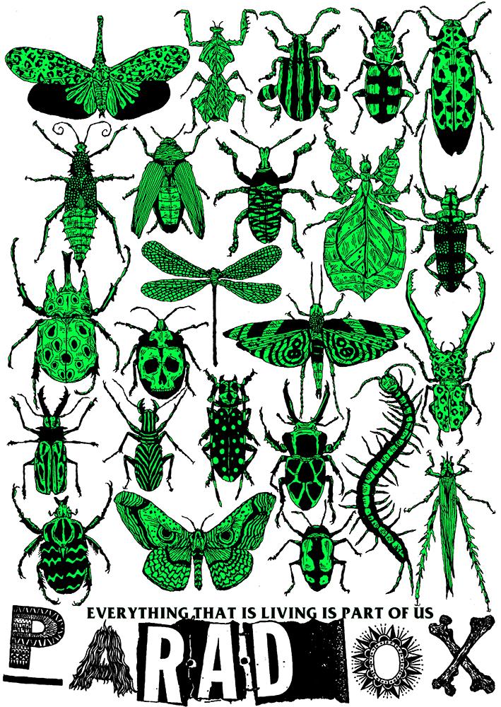 Bugs are beautiful