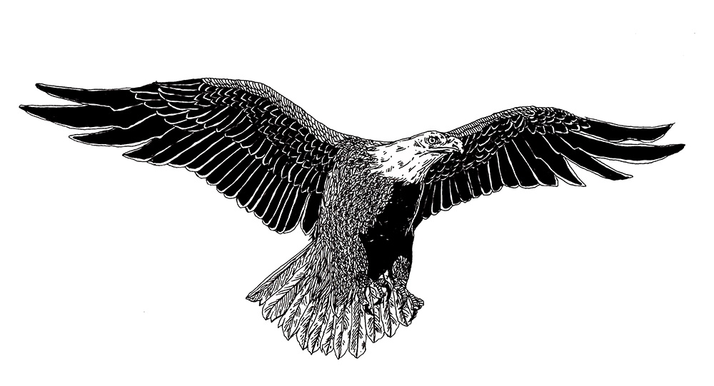 DIGAWELL Eagle4