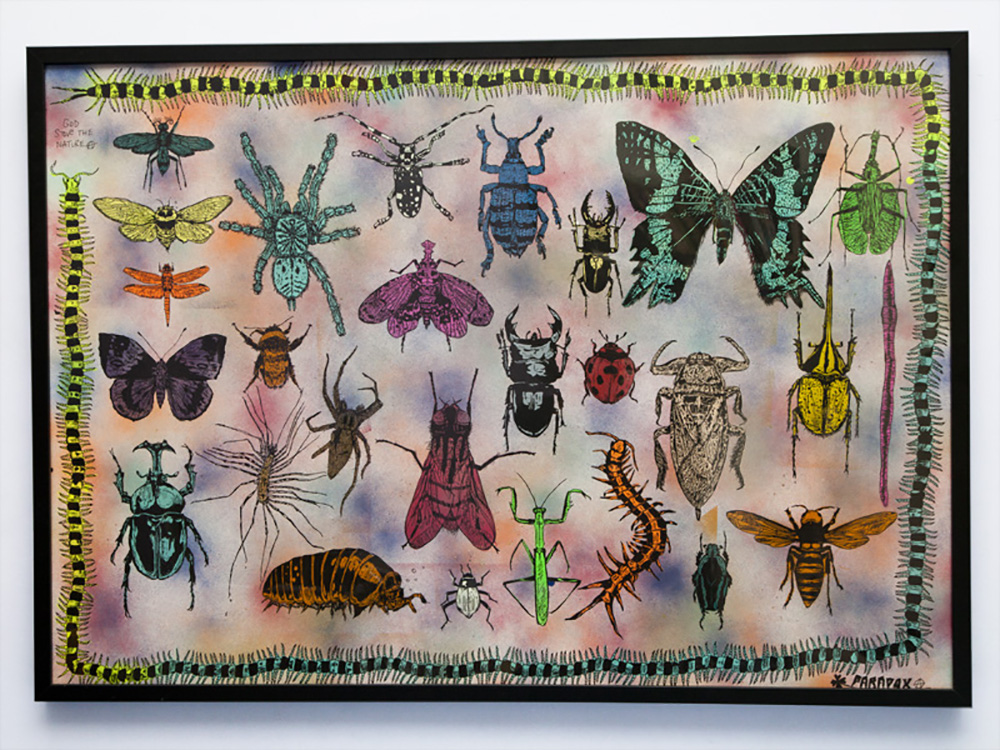 Bugs H700mm x  W1000mm Acrylic on paper