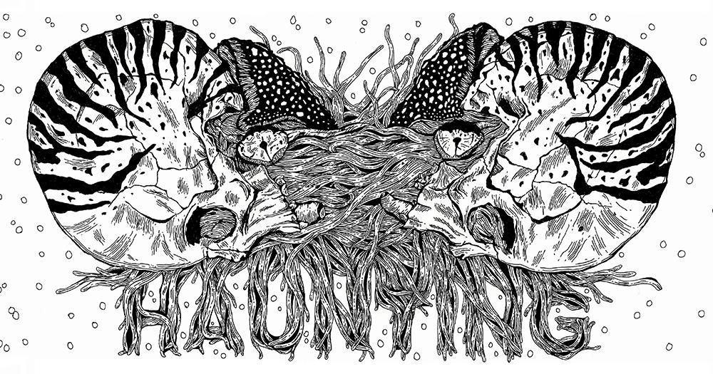 Haunting Nautilus