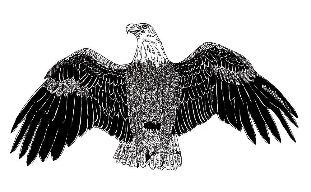 DIGAWELL Eagle2