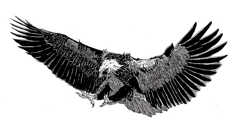 DIGAWELL Eagle1